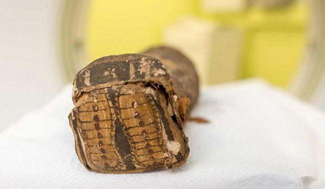 Ошибки египтологов: как мумия