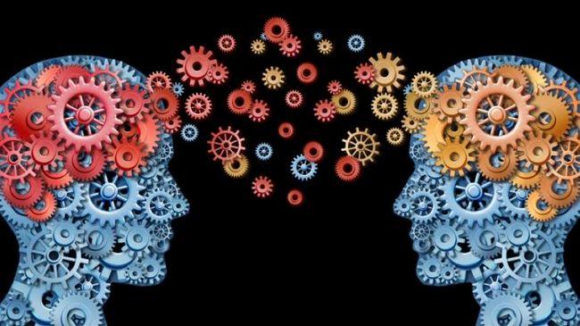 Основные направления психологии: одна наука, но разный предмет изучения