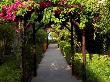 Akteon Holiday Village 4 Кипр