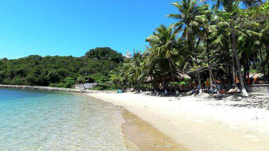 seaside beach hotel нячанг отзывы
