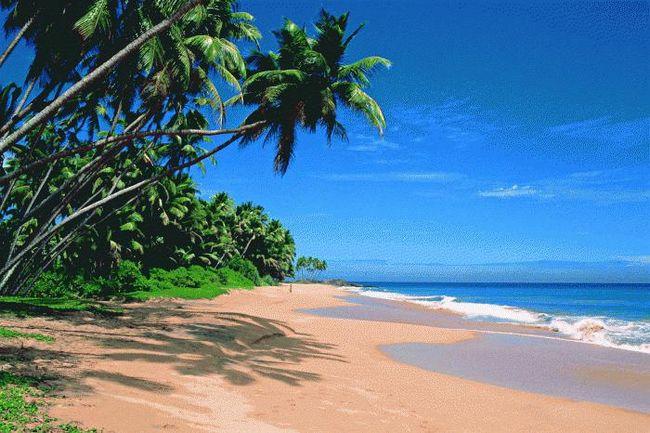 silver sands beach resort 3 колва