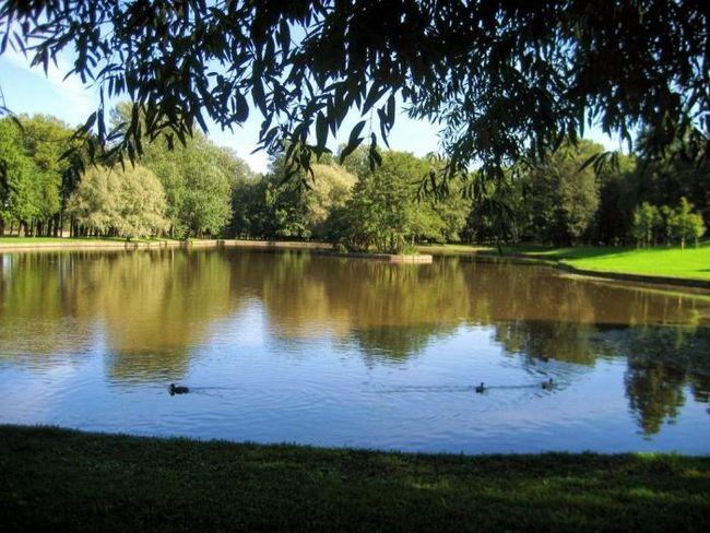 Озеро безымянное красносельского района - чистейший водоем в окрестностях санкт-петербурга