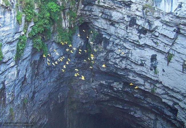 Пещера ласточек - нетронутая природа