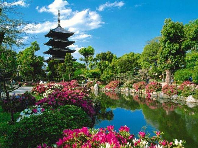 Площадь японии в географическом контексте