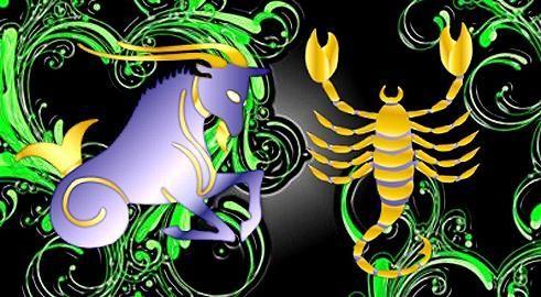 козерог и скорпион