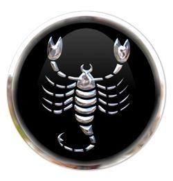 пара козерог и скорпион