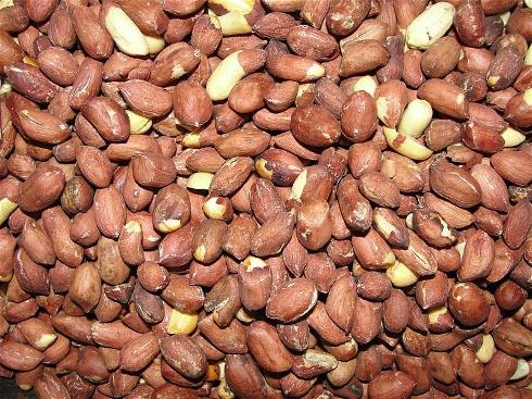 Почему сенегал называют арахисовой республикой: немного истории и экономики