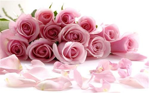Подари цветы на день рожденья и не только
