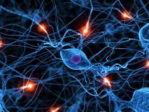 как тренировать память взрослому