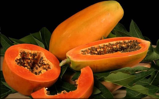 Полезные свойства папайи – для красоты и здоровья