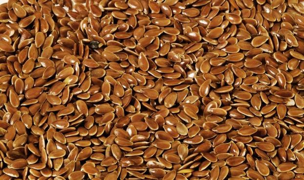 Польза семян льна: лекарство, известное с древности