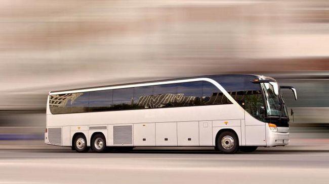 Вологда - Санкт-Петербург автобус