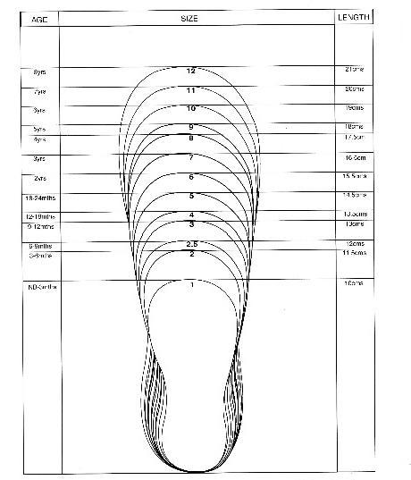 Размер обуви сша. Правила подбора