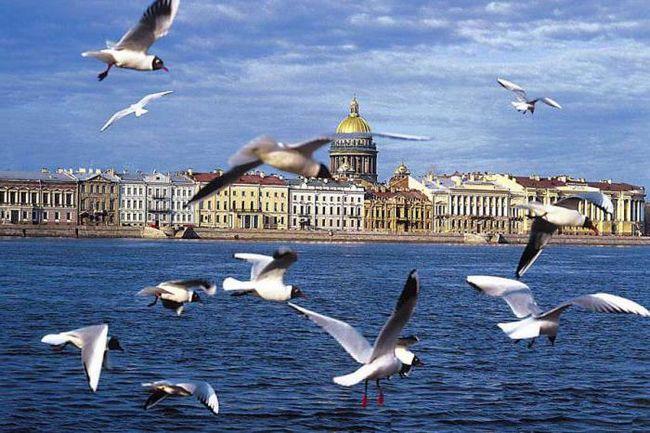 речные круизы из санкт петербурга по россии с возвращением в спб