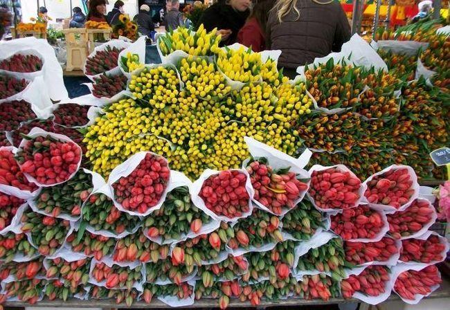 Рижский рынок цветов к вашим услугам