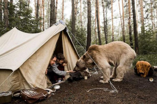 Русская семья и медведь: оригинальная фотосессия