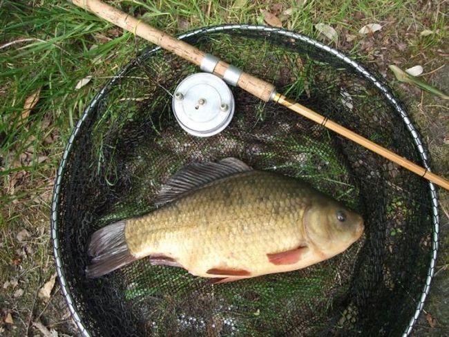 Рыбалка на карасей - исконно русское занятие