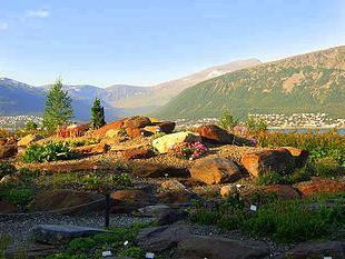 арктико альпийский ботанический сад