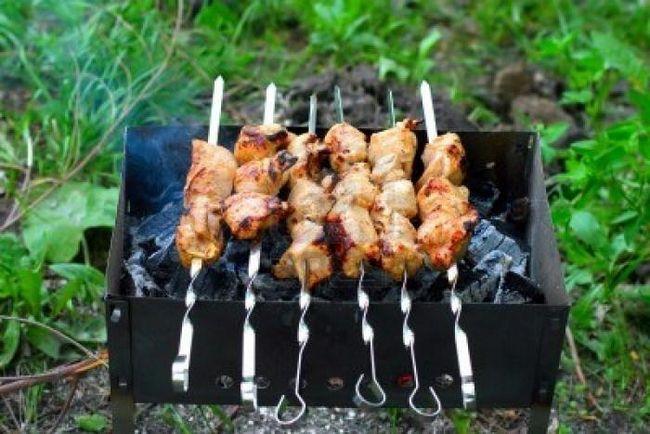 Шашлыки на природе – идеальное блюдо для пикника