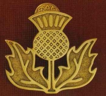 Символ шотландии - чертополох, волынка и тартан