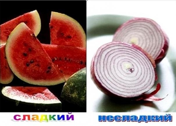 Словообразование в русском языке - процесс развития