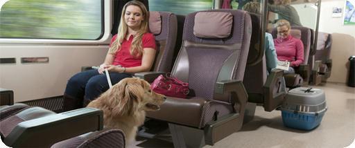 правила провоза собак в поезде