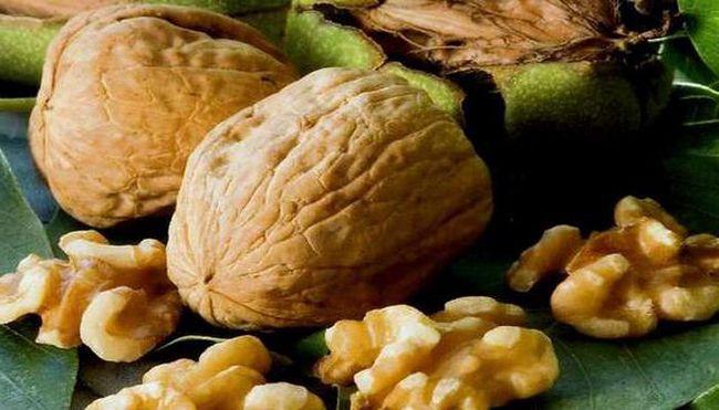 лучшие сорта грецких орехов