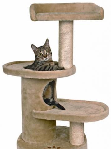 купить домик для кошки