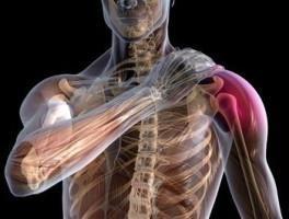 плечевого сустава