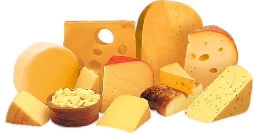 Сыр твердых сортов: классификация, производство и полезные свойства