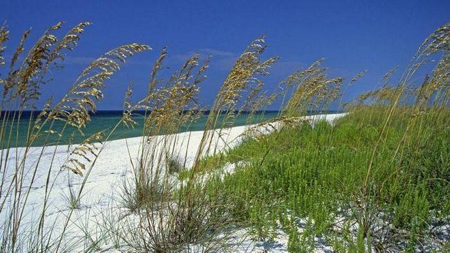 Белый песок. Фото