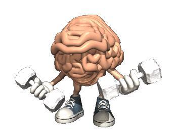 Упражнения для мозга как способ самосовершенствования