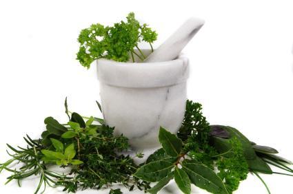 Травяные сборы для похудения