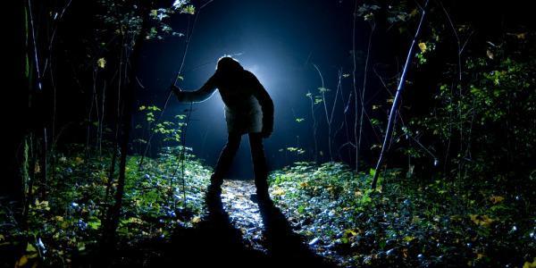Выживание в тайге человека: курс молодого бойца