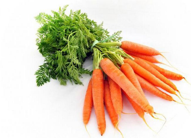 загадки про морковку